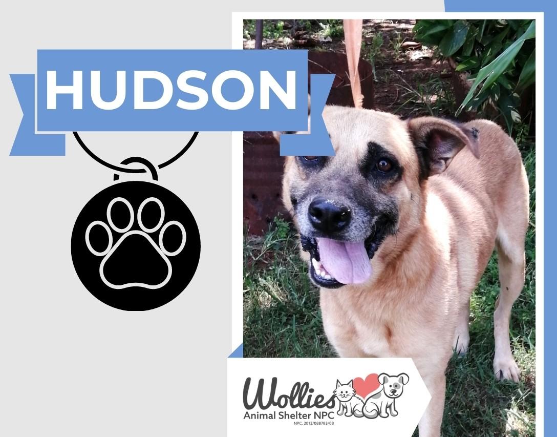 Slider HUDSON