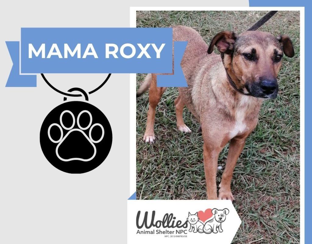 mama roxy